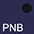 PNB Тёмно-Синий / Чёрный
