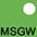 MSGW Зелёный Лайм / Белый
